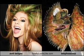 Avril Lavigne Totally Looks Like Dilophosaurus