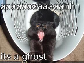 aaaaaaaaaaaahh  its a ghost