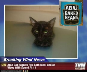 Breaking Wind News - Area Cat Regrets Pre-Bath Meal Choice Video With Sound At 11