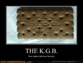 THE K.G.B.