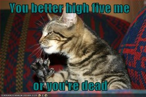 You better high five me  or you're dead