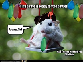 Tiny pirate is ready for the battle!
