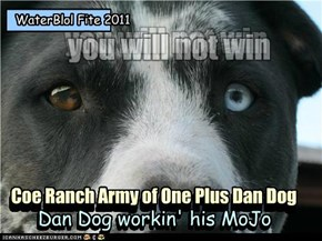 Dan Dog workin' his MoJo