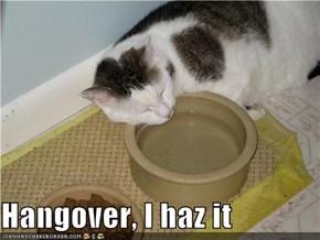 Hangover, I haz it