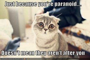 Just because you're paranoid....  Doesn't mean they aren't after you