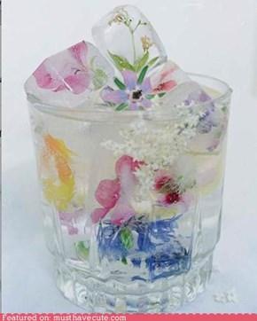 Epicute: Floral Ice