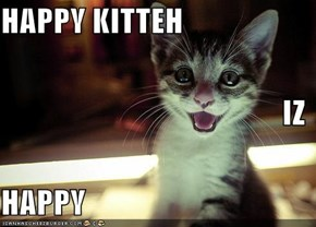 HAPPY KITTEH IZ  HAPPY