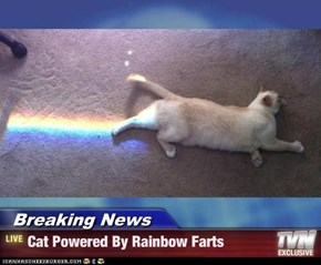 Breaking News - Cat Powered By Rainbow Farts