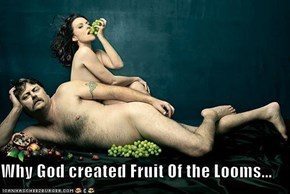 Why God created Fruit Of the Looms...