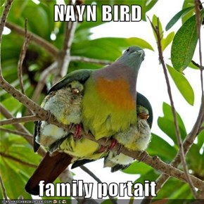 NAYN BIRD   family portait