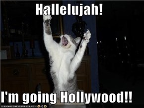 Hallelujah!  I'm going Hollywood!!