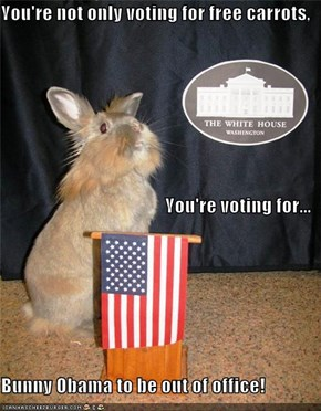You're not only voting for free carrots, You're voting for... Bunny Obama to be out of office!