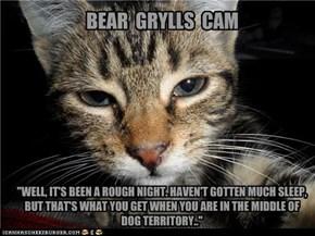 BEAR  GRYLLS  CAM