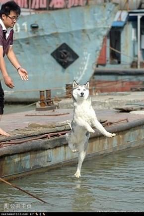 Iz Walkin on Water!