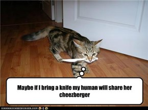 Maybe if I bring a knife my human will share her cheezberger