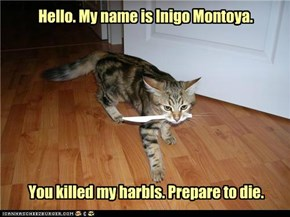 Hello. My name is Inigo Montoya.