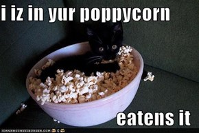 i iz in yur poppycorn  eatens it