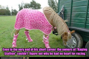 Sad horse is sad