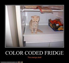 COLOR CODED FRIDGE