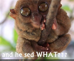 and he sed WHAT???