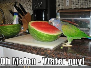 Oh Melon - Water guy!