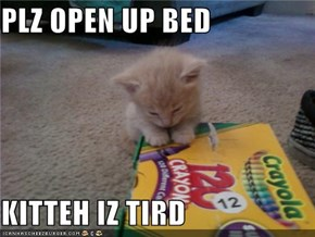 PLZ OPEN UP BED  KITTEH IZ TIRD