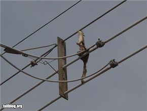 Electric Squirrel Fail
