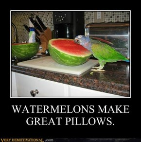 WATERMELONS MAKE GREAT PILLOWS.