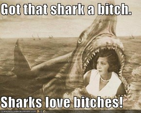 Got that shark a bitch.  Sharks love bitches!