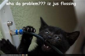 wha da problem??? iz jus flossing
