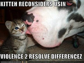 KITTEH RECONSIDERS USIN  VIOLENCE 2 RESOLVE DIFFERENCEZ