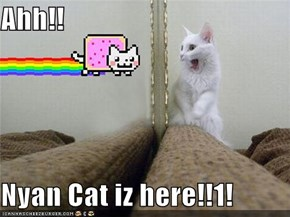 Ahh!!  Nyan Cat iz here!!1!