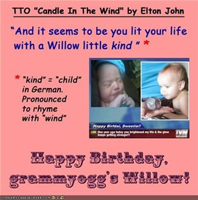 "Happy Birthday, grammyogg's Willow!  (TTO ""Candle In The Wind"" by Elton John)"