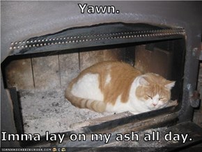 Yawn.  Imma lay on my ash all day.