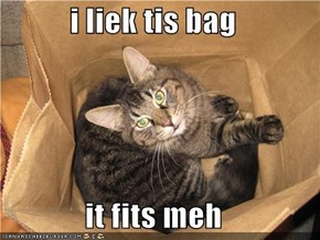 i liek tis bag  it fits meh
