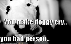 You make doggy cry.. you bad person..