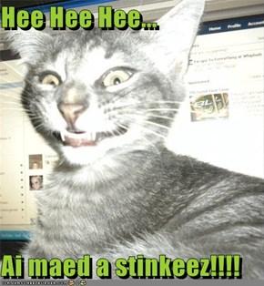 Hee Hee Hee...  Ai maed a stinkeez!!!!
