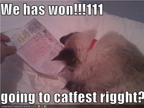 We has won!!!111  going to catfest rigght?!!