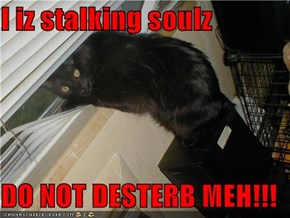 I iz stalking soulz  DO NOT DESTERB MEH!!!