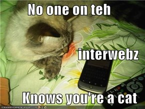 No one on teh  interwebz Knows you're a cat
