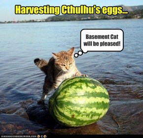 Harvesting Cthulhu's eggs...