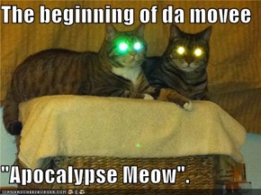 "The beginning of da movee  ""Apocalypse Meow""."