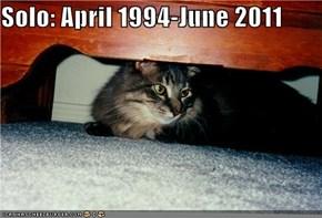 Solo: April 1994-June 2011