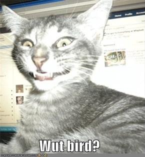 Wut bird?