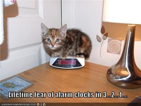 Lifetime fear of alarm clocks in 3...2...1....