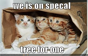 we is on specal  tree for one