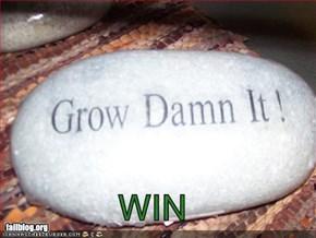 Grow Damn It!