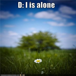D: I is alone