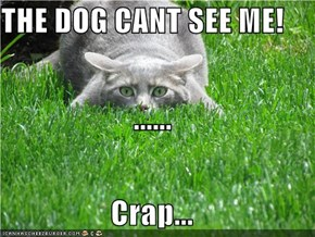 THE DOG CANT SEE ME! ...... Crap...