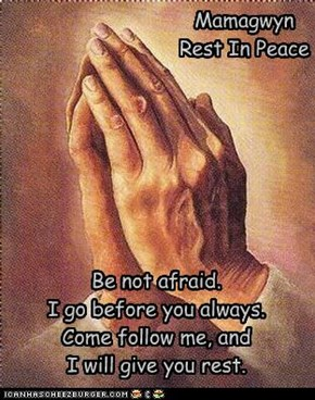 Be not afraid. I go before you always. Come follow me, and I will give you rest.